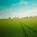 The Green Field by piximi