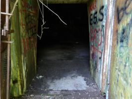 TNT Area - Doorway of First TNT Dome by Sneas