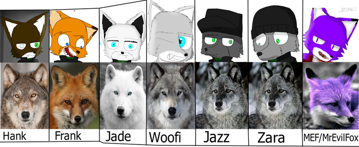 All My Furries In Real Life by RealVirus86