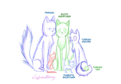 [Sketch] The 3 Railway Cats and 3 Amigos by GayTrainsAllTheWay