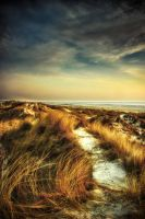 North sea dunes by JimP4nsen