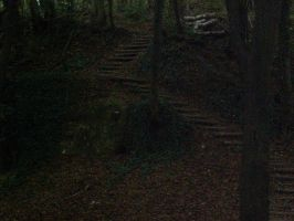 Stairs of the ShadowForest by Shanna-the-Freak