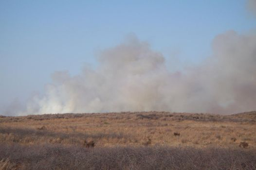 Small grass fire by DJaked