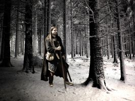 Viking by Maddin-P
