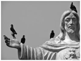 Pigeons Of Christ by marcelomb
