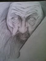 The old man  by StormingINk