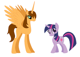 Alicorn Me And Twilight Sparkle by TigerPrincessKaitlyn