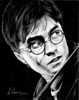 Harry Potter Project: Harry James Potter by artbyjoewinkler