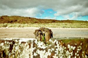 Alnmouth Beach II by scribbleXcore