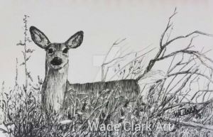 Pen and ink - Ojibway Autumn by dogman63