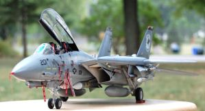 F14 Tomcat by Karaes-Father