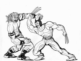 Wolverine vs Sabertooth by Charger426