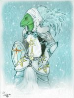 Paladin Turtle- Comission for Aiato by Only-Doll