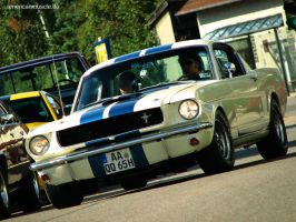 65 shelby by AmericanMuscle