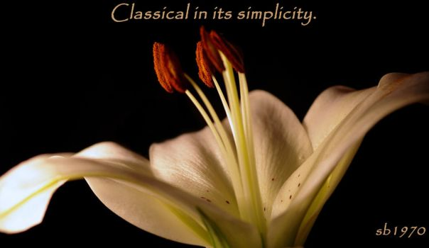 classical in its simplicity by sillybilly1970