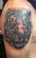 Tiger tattoo by steelteamstudio