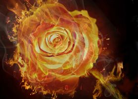 In Flame by Priitii