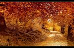 Way to Autum V. by Sunnystorm
