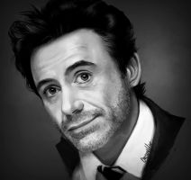 Robert Downey Jr. by Blueberry-Cat