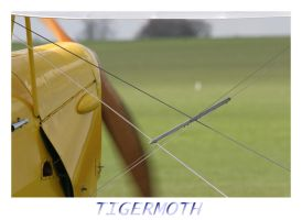 TigerMoth by Melee-pic