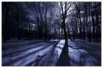 Frozen Shadows II by aquapell