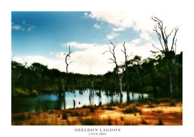 Sheldon Lagoon by Nikitia1979