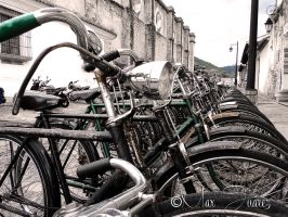 Vintage bicycles by maxjdgt