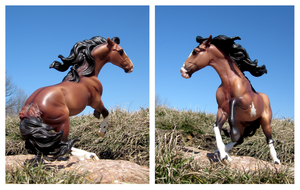 Breyer - Dancing With The Wind by The-Toy-Chest