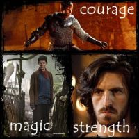 courage, magic and strength by 1shewolf1