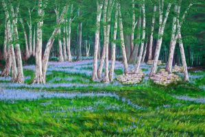 Bluebells and Silverbirch. by Dranared69