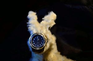 Fuzzy watch by LissiKete