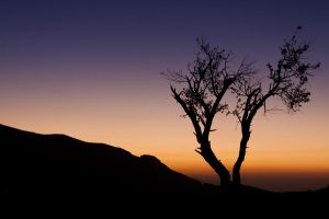 Omani Sunrise by Eloren