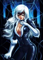 Blackcat by ramy