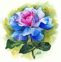 Blue Rose by NataliHall
