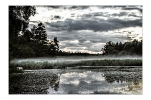 A Pond by AndersStangl