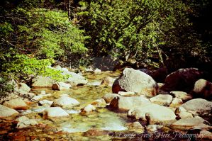A Brook in the Mountains by jltrafton