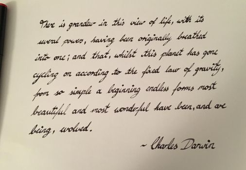 Charles Darwin Quote by SynthCorpse