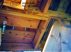 Our Treehouse Built by My Husband {Photo 45} by Empress-XZarrethTKon