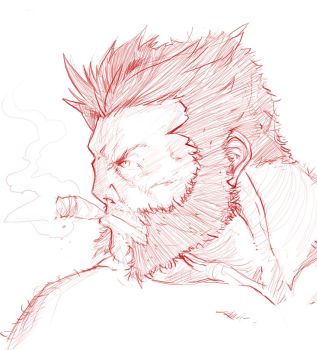 Logan rough by MeaT-Artworx