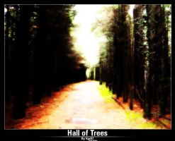 Hall of Trees by Vpr87