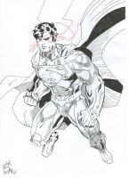 Superman New 52 Version by palahniuksin666