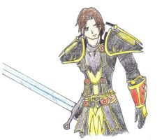 Paladin by FactionFighter