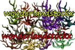 free corals png on transparent background pack 4 by wonderlandstockX