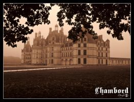 Mist at Chambord by Clange-kaze