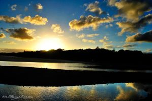Sawtell Reflections by AwakenendByDreams