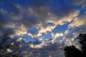 Morning Sky 1-2-11 by Tailgun2009