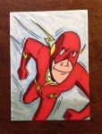 Flash Sketch Card by madscott