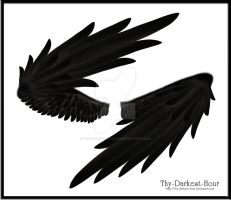 Wrapped Wings - Black by Thy-Darkest-Hour