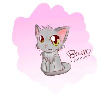 Bruno the cat by Winooon