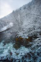 And winter came. by Aenea-Jones